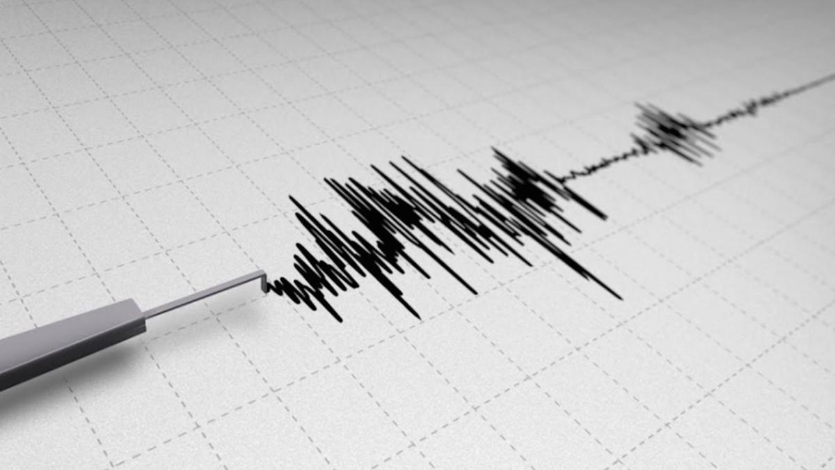 Mt Ricci lancia un software per la prevenzione del rischio sismico